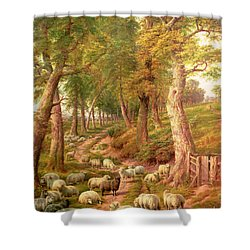 Landscape With Sheep Shower Curtain by Charles Joseph