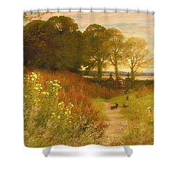 Landscape With Wild Flowers And Rabbits Shower Curtain by Robert Collinson