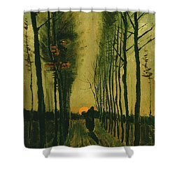Shower Curtain featuring the painting Lane Of Poplars At Sunset by Van Gogh