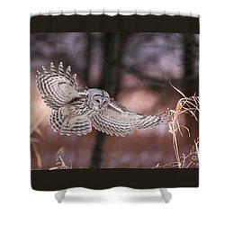 L'ange De La Mort Shower Curtain by Denis Dumoulin