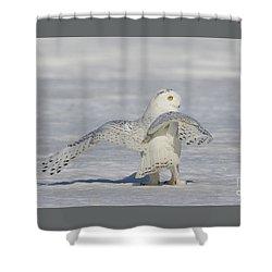 L'ange. Shower Curtain