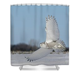 L'ange Qui Chasse Shower Curtain