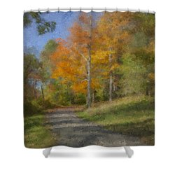 Langwater Path In October Shower Curtain