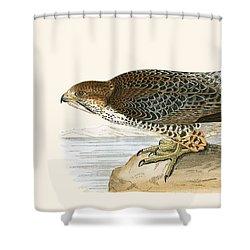 Lanner Falcon Shower Curtain