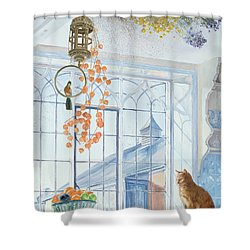 Lanterns Shower Curtain by Timothy Easton