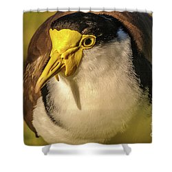 Lapwing 06 Shower Curtain