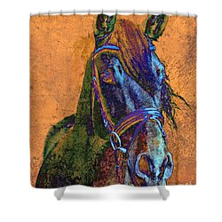 Laredo Shower Curtain