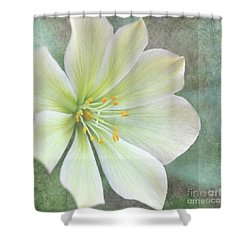 Shower Curtain featuring the pyrography Large Flower by Lyn Randle