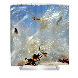 Large Milkweed Bug Shower Curtain