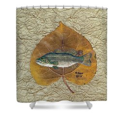 Large Mouth Bass #3 Shower Curtain