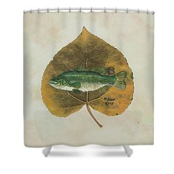 Large Mouth Bass Shower Curtain