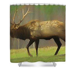Large Pennsylvania Bull Elk. Shower Curtain