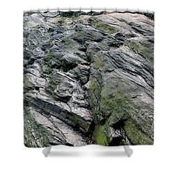 Large Rock At Central Park Shower Curtain