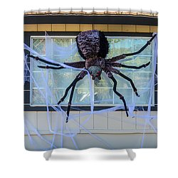 Large Scary Spider  Shower Curtain by Garry Gay