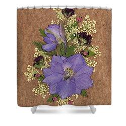 Larkspur And Queen-ann's-lace Pressed Flower Arrangement Shower Curtain
