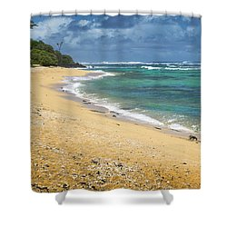 Larsons Beach Kauai Shower Curtain