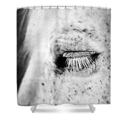 Lashes Shower Curtain by Darren Fisher