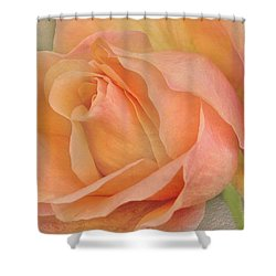 Last Autumn Rose Shower Curtain