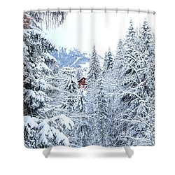 Last Cabin Standing- Shower Curtain
