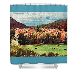 Last Call  Shower Curtain by John Selmer Sr