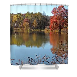 Shower Curtain featuring the photograph Last Colors Of Fall by Teresa Schomig