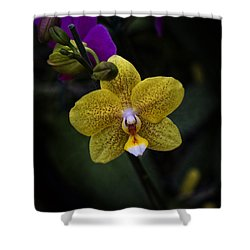 Last Dance Shower Curtain