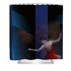 Last Flamenco Shower Curtain