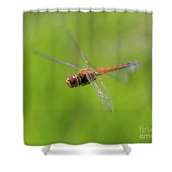 Last Flight Of Summer Shower Curtain