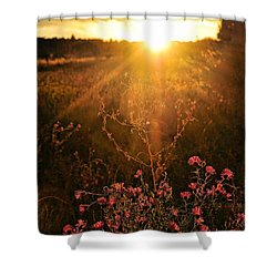 Shower Curtain featuring the photograph Last Glimpse Of Light by Jan Amiss Photography