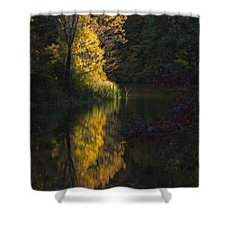 Shower Curtain featuring the photograph Last Light - D009910 by Daniel Dempster