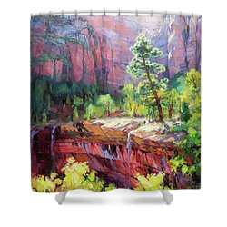 Shower Curtain featuring the painting Last Light In Zion by Steve Henderson