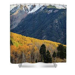 Shower Curtain featuring the photograph Last Light Of Autumn Vertical by David Chandler