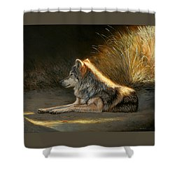 Last Light - Wolf Shower Curtain