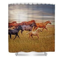 Last Light's Run Shower Curtain