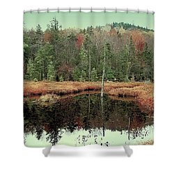 Shower Curtain featuring the photograph Last Of Autumn On Fly Pond by David Patterson