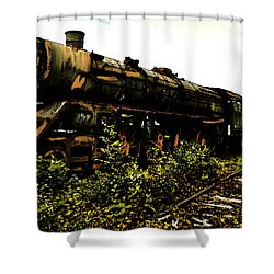 Shower Curtain featuring the painting Last Of The 309  Steam Train  by Iconic Images Art Gallery David Pucciarelli