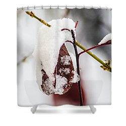 Last Of The Autumn Red Shower Curtain