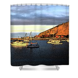Shower Curtain featuring the photograph Last Rays At The Bay by Nareeta Martin