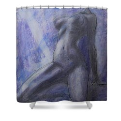 Shower Curtain featuring the painting Last Ride Of The Day by Jarko Aka Lui Grande