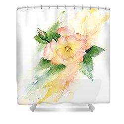 Last Rose Of Summer Shower Curtain
