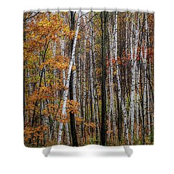 Shower Curtain featuring the photograph Last Stand by Kendall McKernon