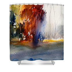 Last Stand Of The Maples Shower Curtain by Sandra Strohschein