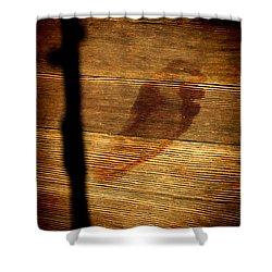 Last Step Shower Curtain by Aliceann Carlton