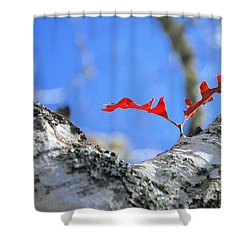 Last To Leaf Shower Curtain