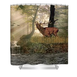 Late Afternoon Call Shower Curtain