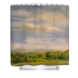 Shower Curtain featuring the painting  Late Afternoon In Vermont  by Laurie Rohner