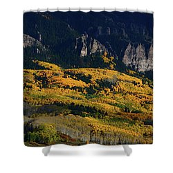 Late Afternoon Light On Aspen Groves At Silver Jack Colorado Shower Curtain