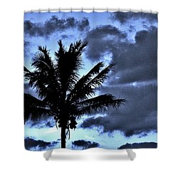 Late Day Palm Shower Curtain by John Wartman