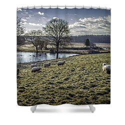 Late Fall Pastoral Shower Curtain