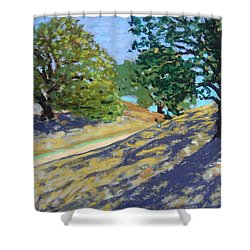 Shower Curtain featuring the painting Late Light's Shadows by Gary Coleman